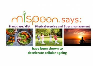 #mispoon says: plant-based diet, physical exercise and stress management have been shown to decelerate cellular ageing