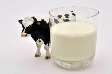 Doit-on bannir le lait? Le Temps, 12.07.2019